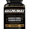 MAGNUMAX - How to use Magnumax?